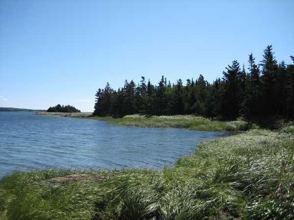 Immobilien Kanada: Grundstueck am Meer - Holland Harbour - Nova Scotia - Kanada