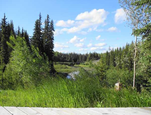 Immobilien Kanada: Wunderschönes Blockhaus inmitten der Natur