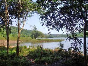 Naturhafen mit Baugrund am Rio Parana / subtropisches Misiones / Argentinien