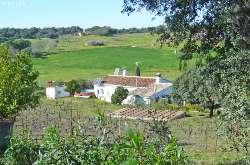 23036x Immobilien Spanien Sevilla Haus Kaufen Immozentral
