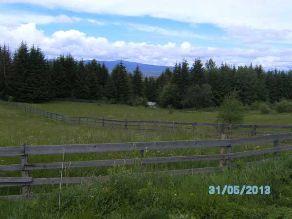 Grundstück in Rumänien zu verkaufen