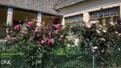 Idyllisches Bauernhaus mit schönem Garten und Hof