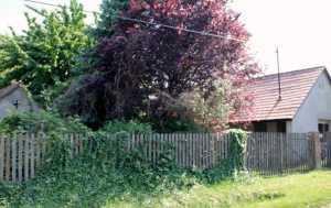 Immobilien Ungarn  Magyarkeszi Haus kaufen Bauernhaus in Süd Ungarn