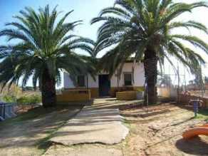 Immobilien Spanien  Rociana del Condado Haus kaufen Finca  in Ruhige Lage mit zwei Große Palmen 20 Minuten zum Strand und Jachthafen.