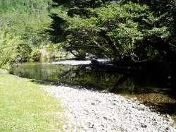 Waldgrundstück in Andenhöhenlage, 107Hektar